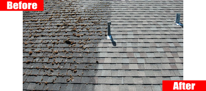 Roof Cleaning Service - Picture of moss and algae removed from one side of the roof.
